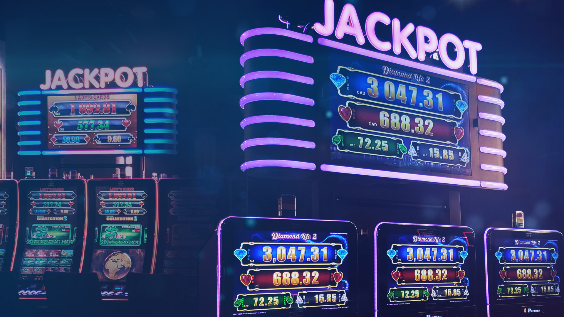 50 jackpots in 2 weeks!
